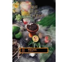 Табак дла кальяна Element Земля Feijoa (Фейхоа) 100гр