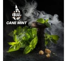 Табак для кальяна Black Burn Cane Mint (Черный Берн Кейн Минт) 25 грамм