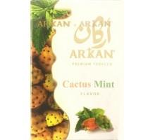 Табак для кальяна Arkan Cactus Mint / Кактус Мята 50 грамм (срок годности истек)