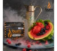 Табак для кальяна Burn Berried Treasure / Ягодные сокровища 100 грамм