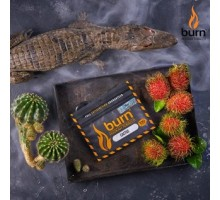 Табак для кальяна Burn Cactus / Кактус 100 грамм