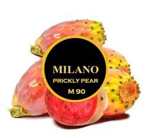 Табак для кальяна Milano Prickly Pear / Опунция M90 100 грамм